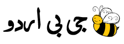 logo_website_urdu