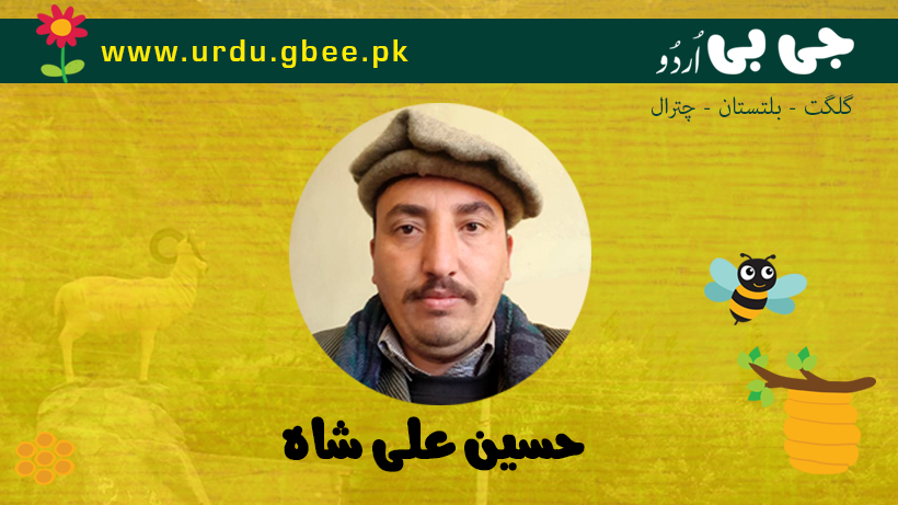 Hussain Ali Shah - Blogger from Gilgit-Baltistana and Chitral